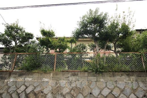南側からの外観。擁壁の上に大きな庭