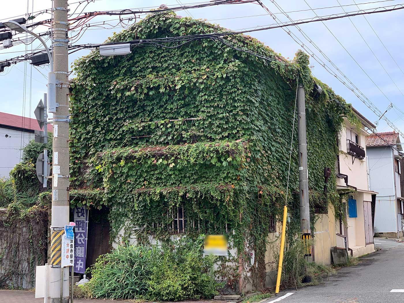 愛すべきツタボーボーハウス(土地売買) (兵庫県明石市日富美町の物件) - 神戸R不動産