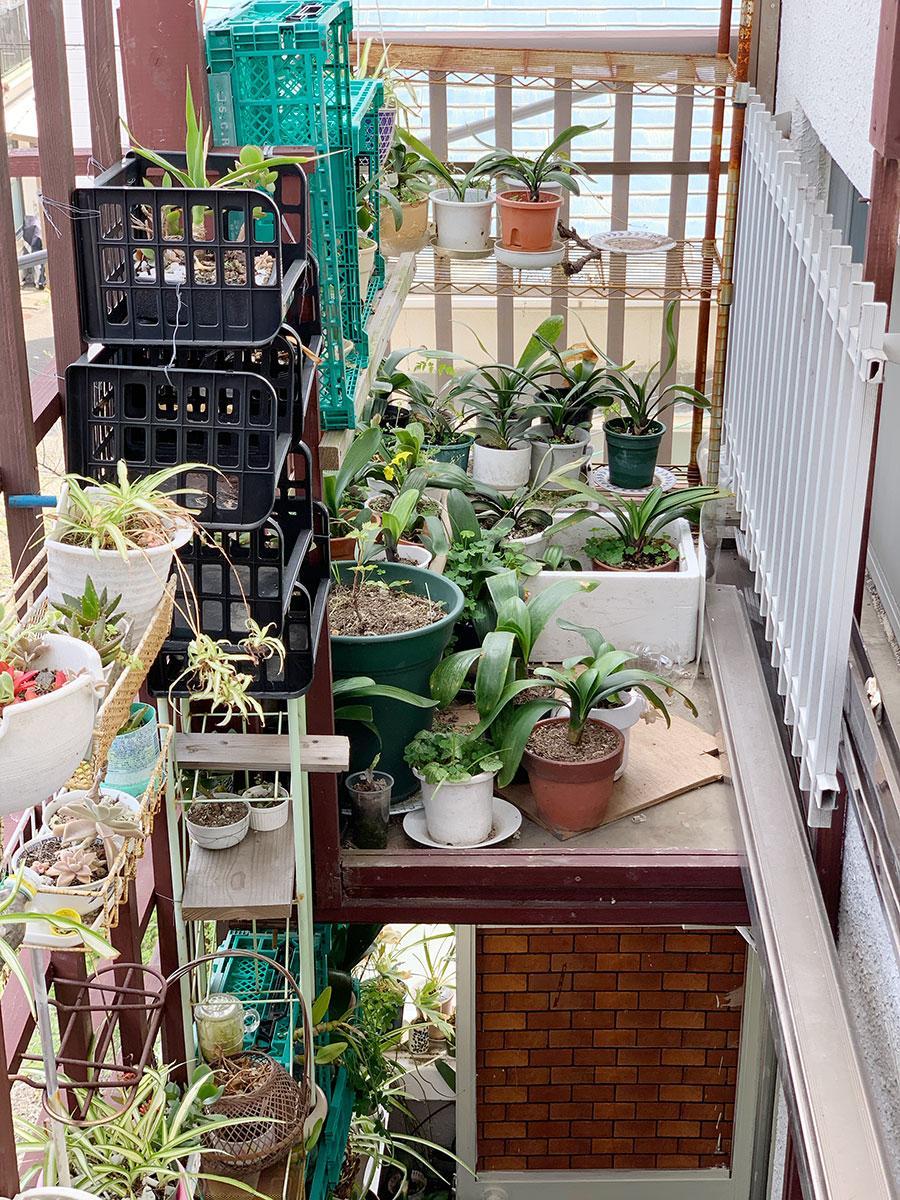 オーナーがDIYで作った階段上の植物スペース