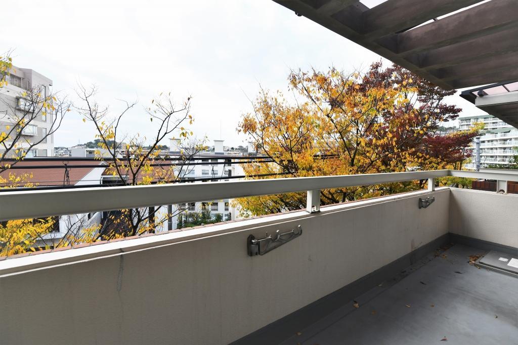 バルコニーから季節によって色づく木々を望む