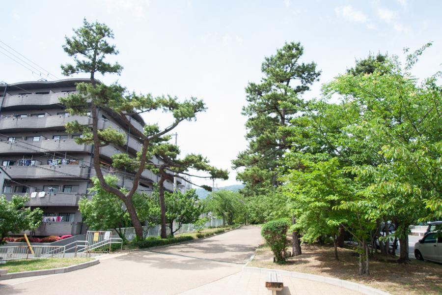 石屋川公園沿いのマンション。通勤通学や散歩も楽しみ
