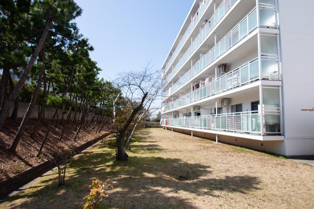 住棟横には桜の木も