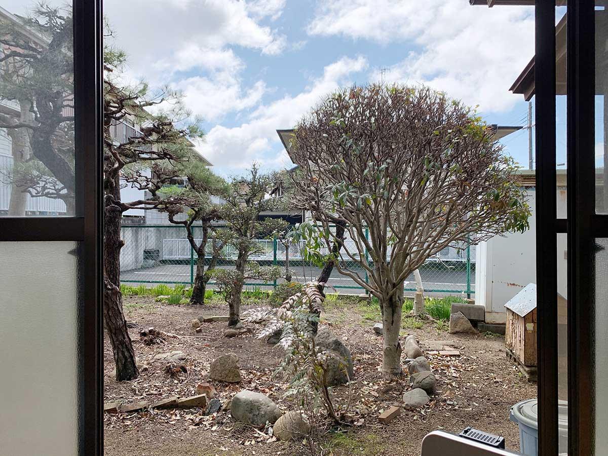 縁側から庭
