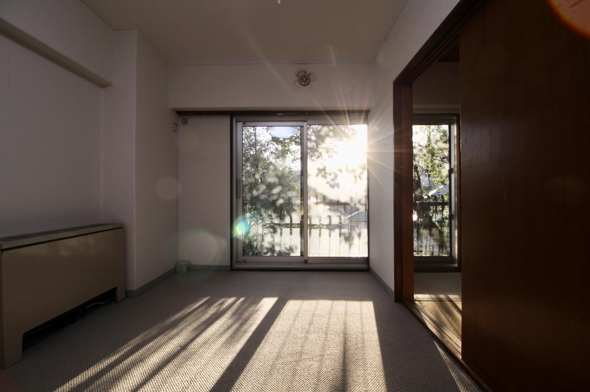 木漏れ日が差し込み部屋全体に光が充満する