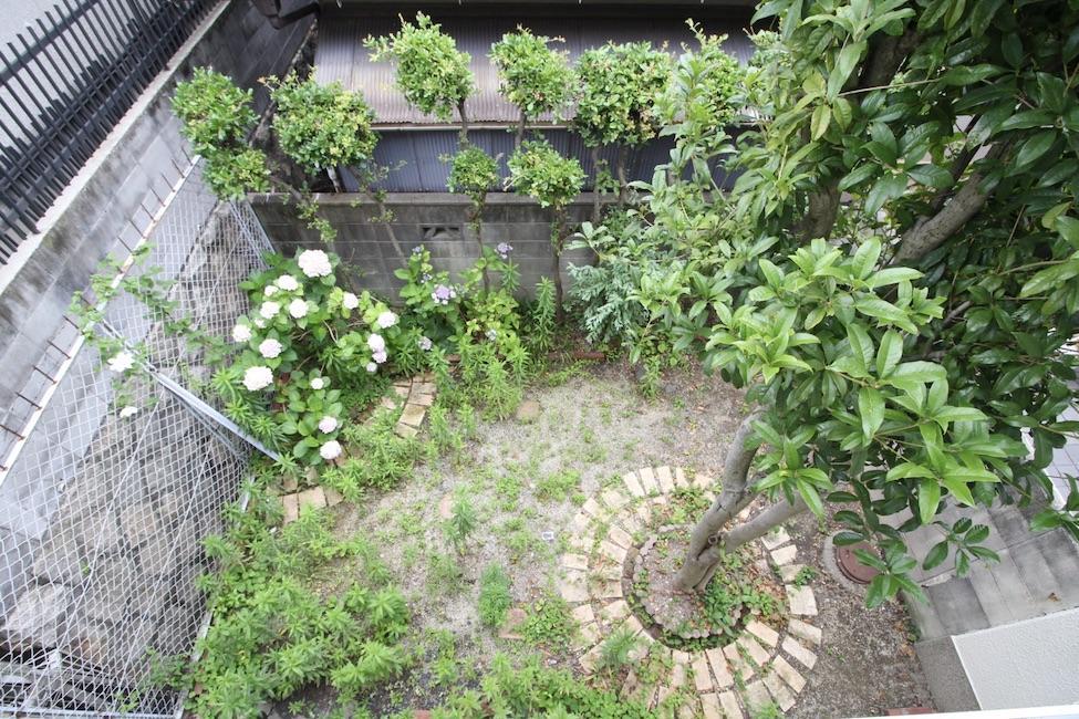 シンボルツリーのある庭を2階から望む