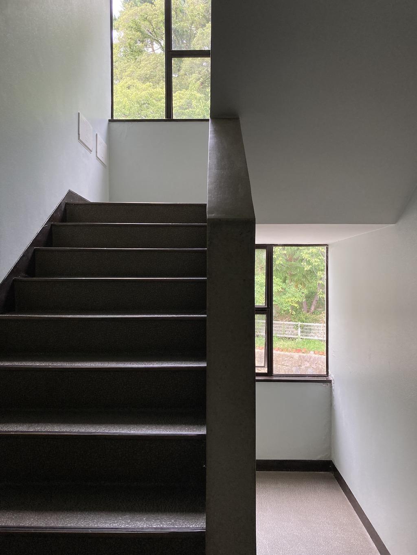 共用階段から緑