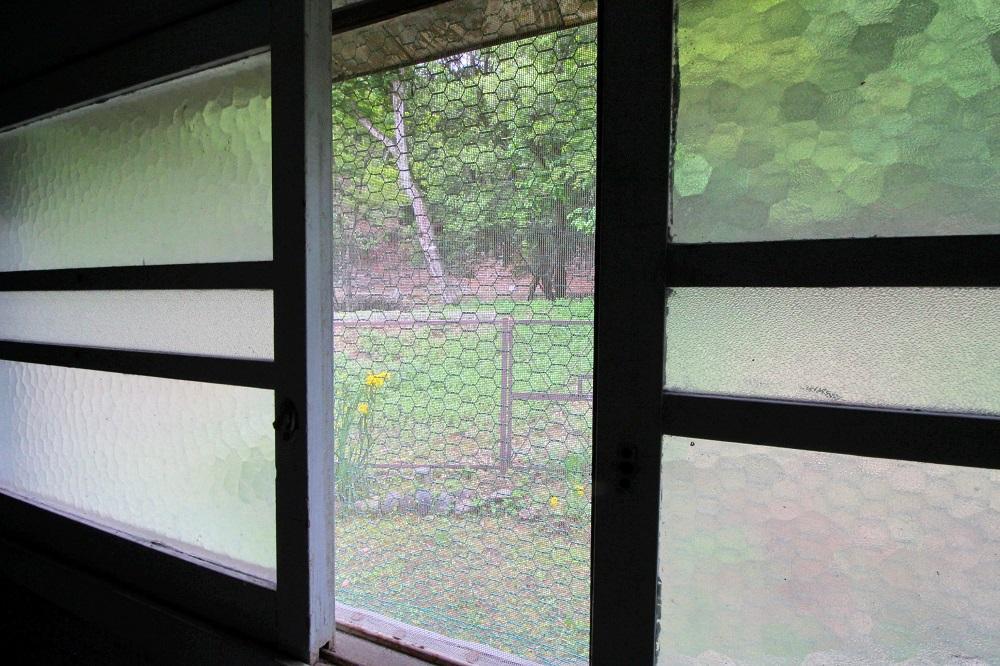 キッチンの窓から裏森