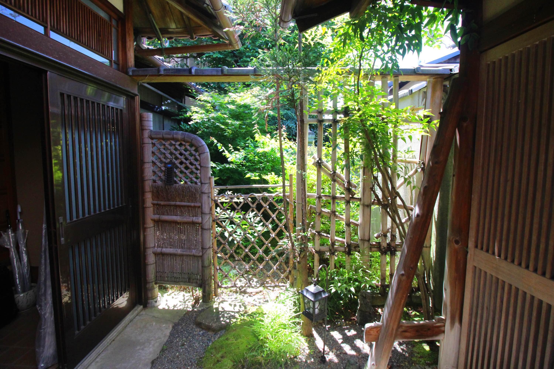 門を入ると右側に新緑の庭(北側)が見えます。