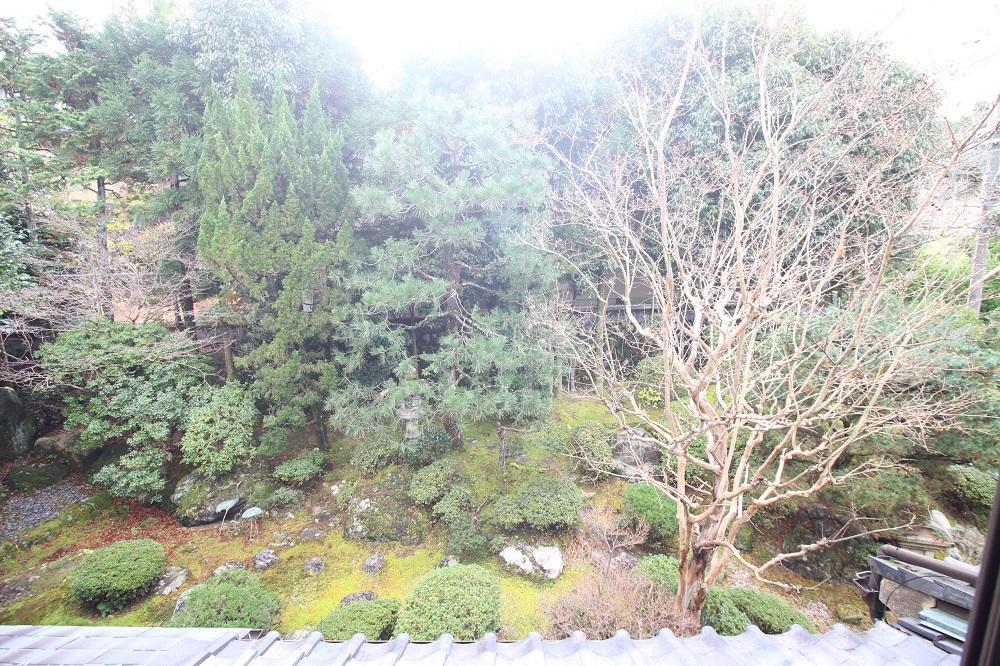2階からの庭園。ちょっとした林です。