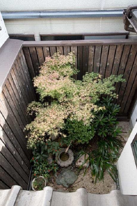 2階からの見る庭