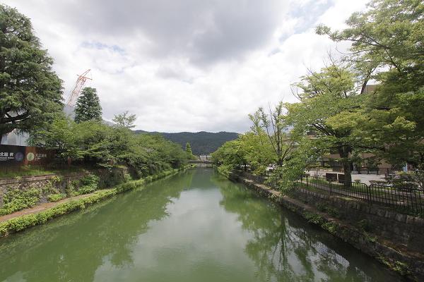 琵琶湖疎水も緑いっぱい