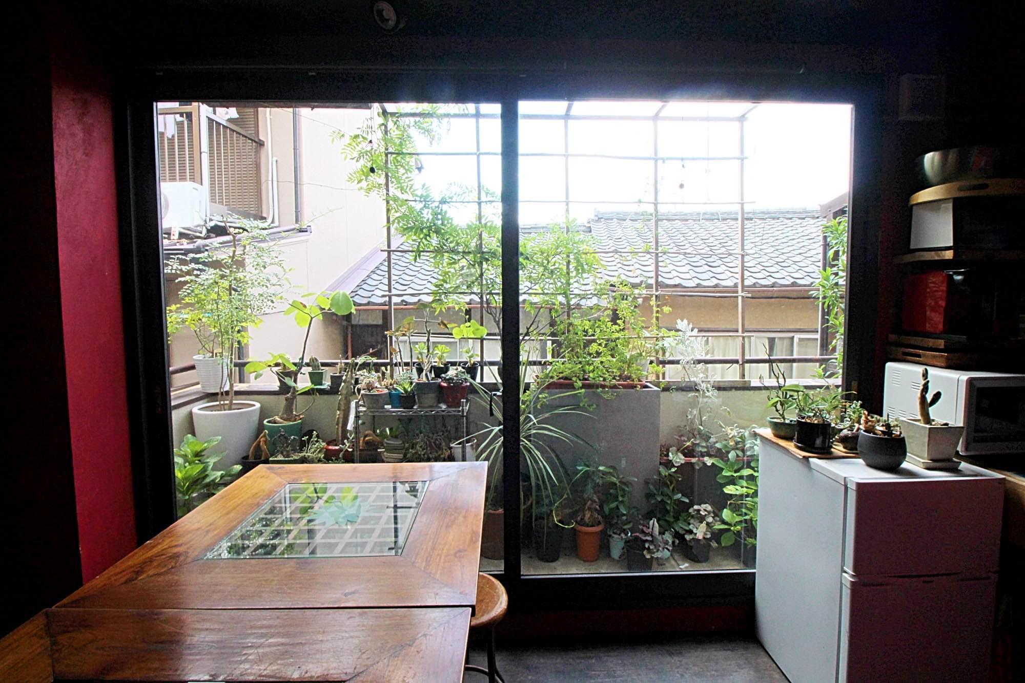 窓際にはお花屋さんらしく所狭しと植物が。