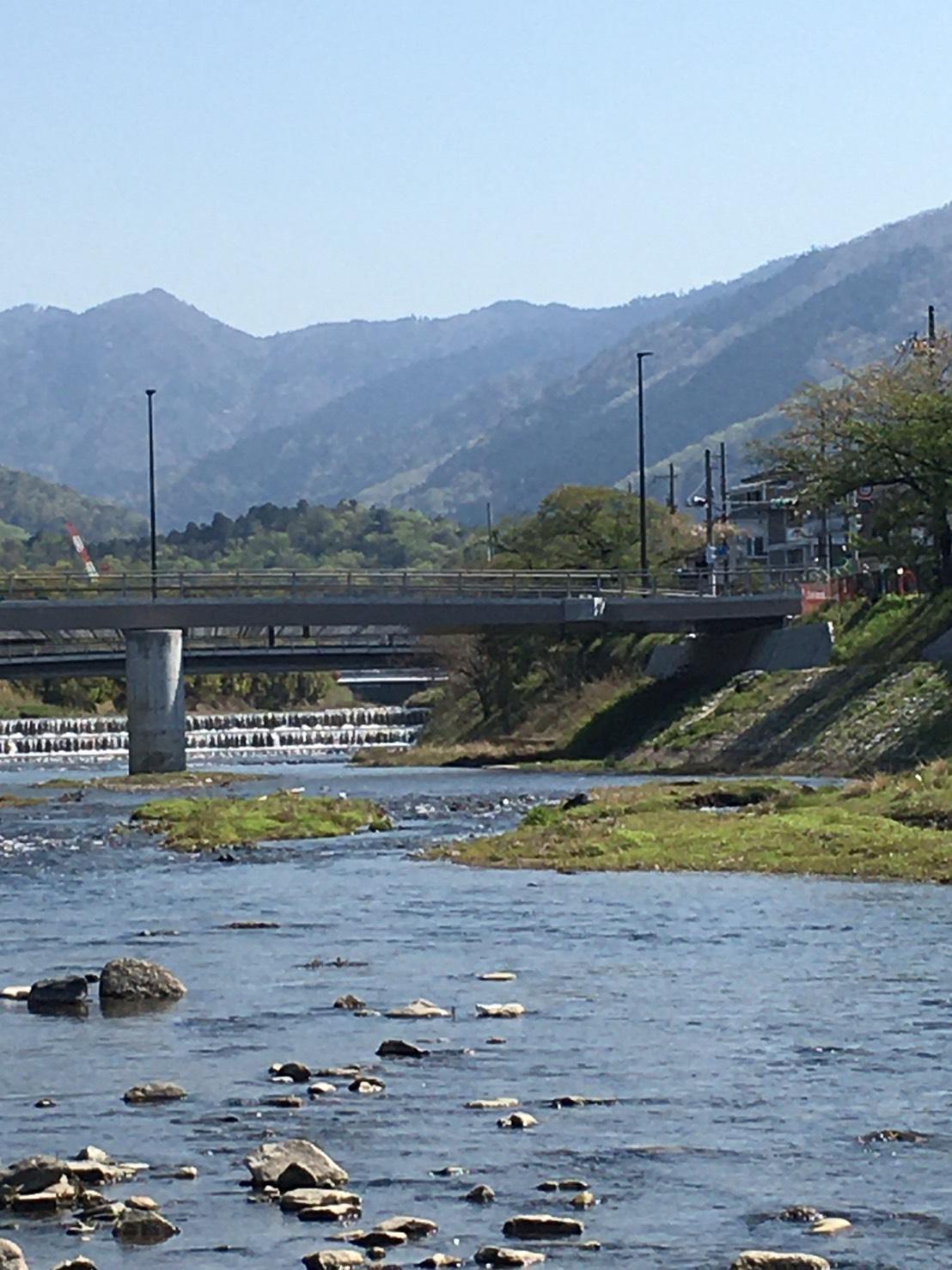 高野川に出ればこの景色。