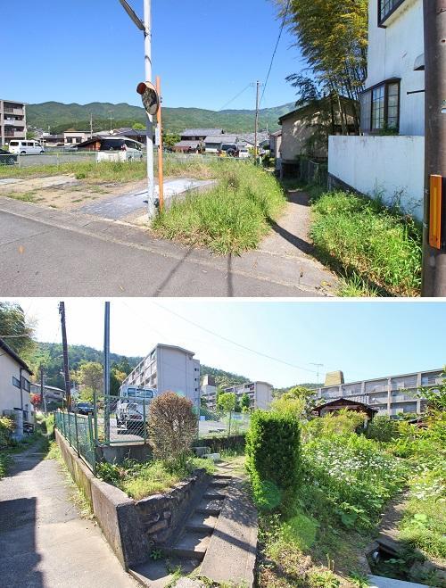 上:右側の通路を行けば下の写真に繋がり、右側の野花の間を進みます