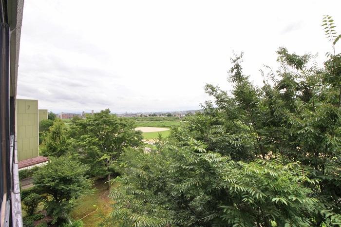 こっちを向いても広がる河川敷と緑