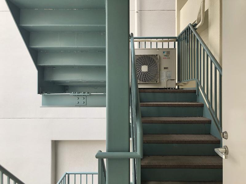 大きいペットは階段側から登ってください。