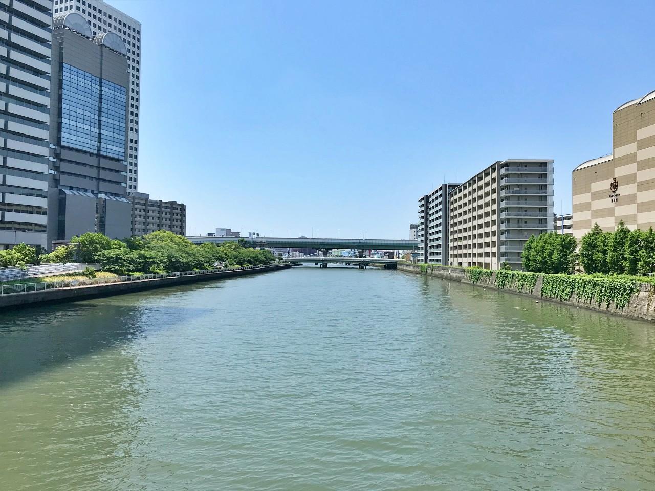 堂島川の眺めを横目に