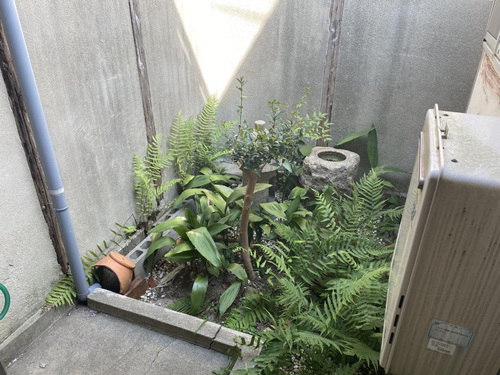 中庭は自分好みの空間にすることができます