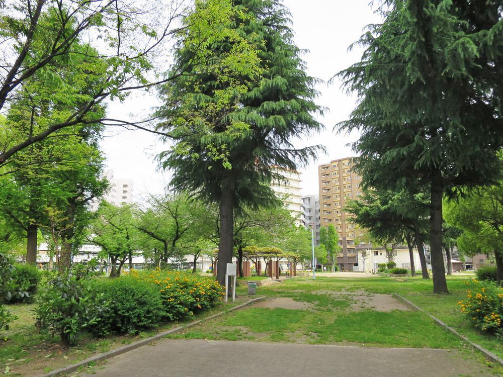 緑が恋しくなったら裏にある公園へ。春にはお花見が楽しめます。