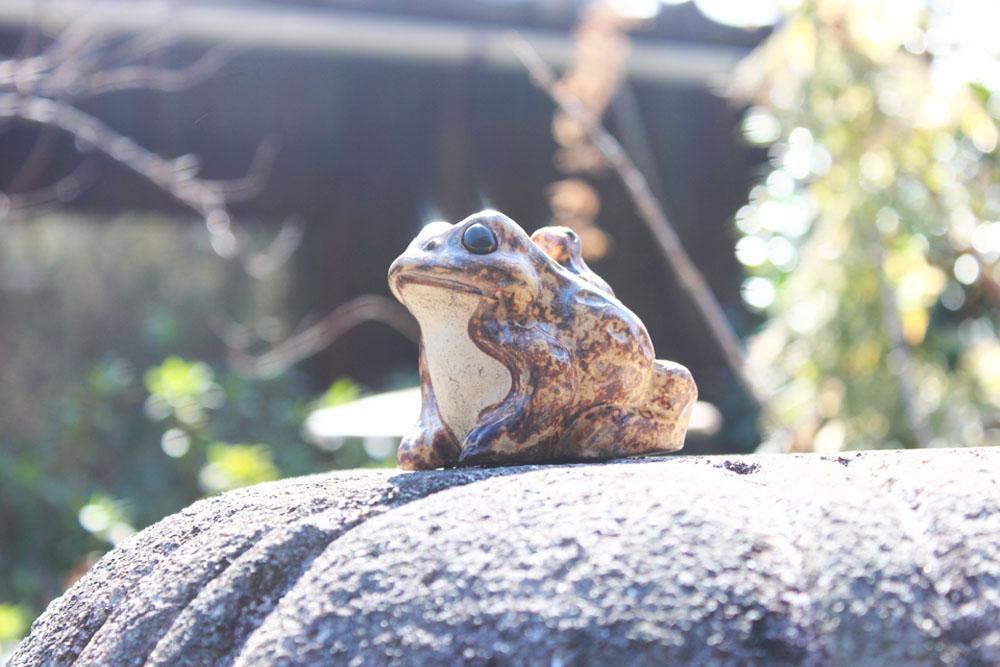 灯籠の上に蛙