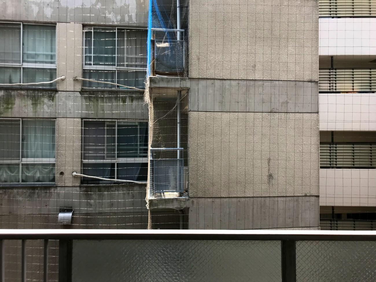 正面の眺望。2つのマンションの境目です