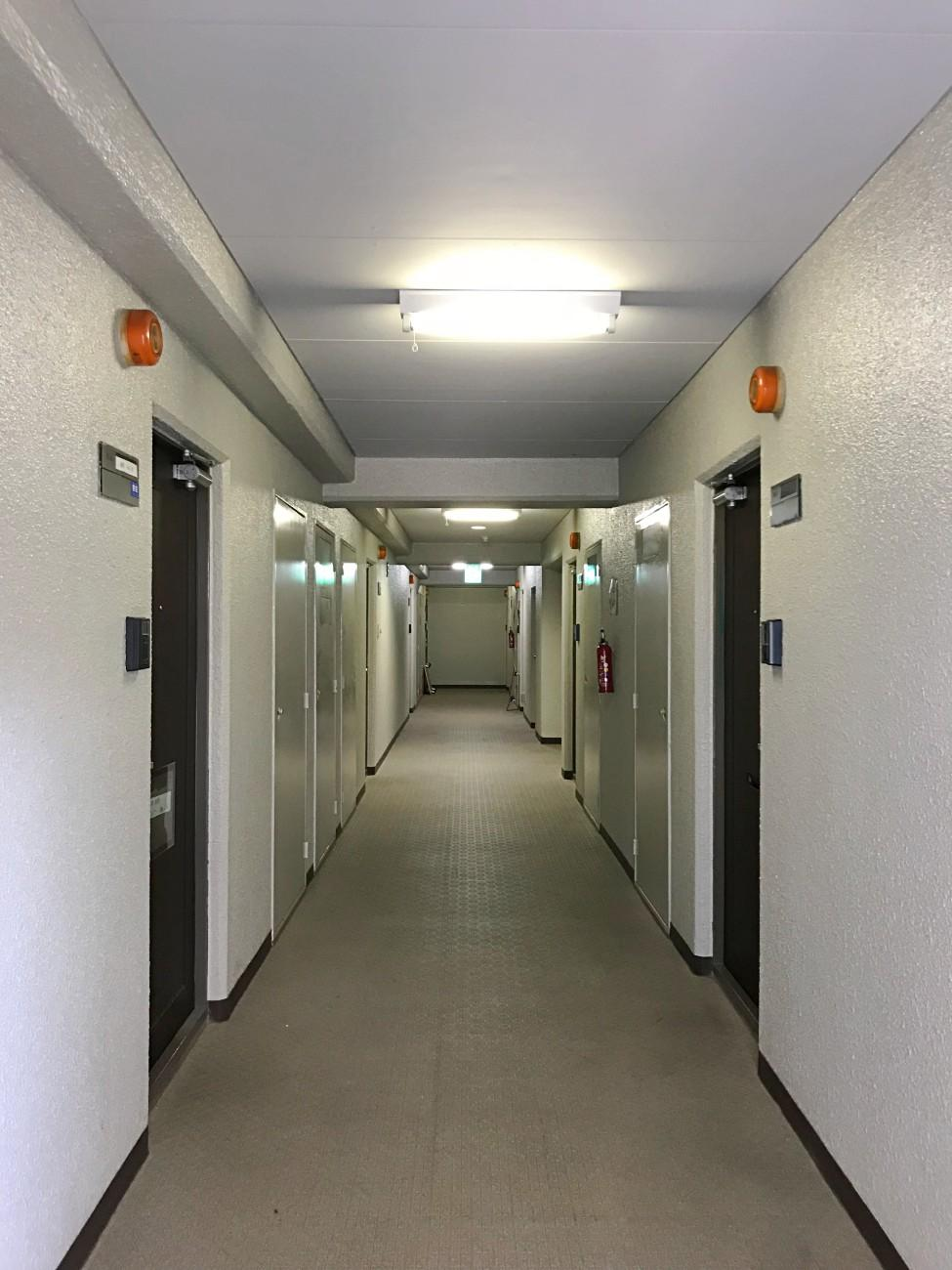 共用廊下はこんなふうです