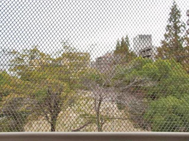 鳩避けのネット越しですが、公園向きビュー