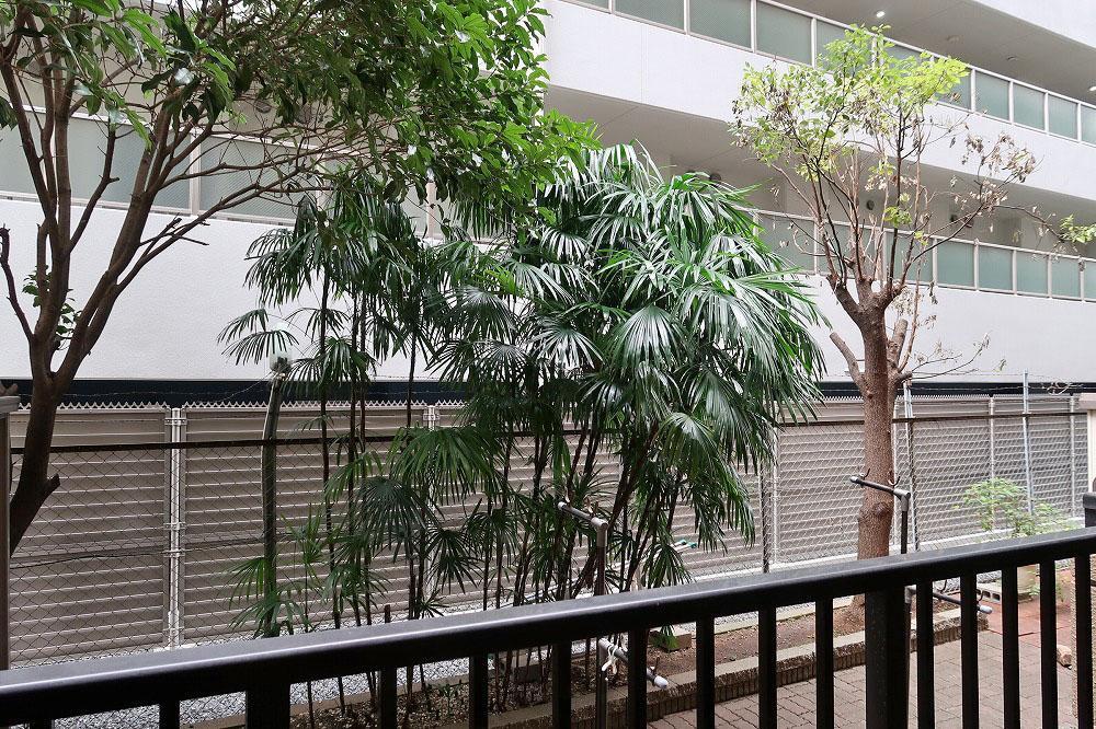 専用庭の木々が向かいのマンションの視線を遮ってくれます。