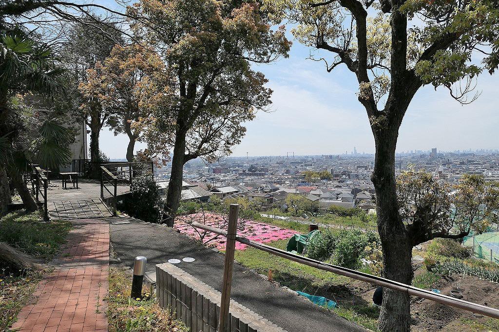 遠くハルカスを望む。大阪の街を一望できます