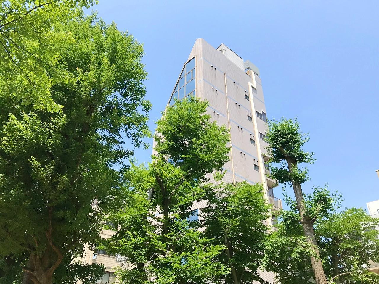 木立の上に現れるは… (大阪市西区京町堀1丁目の物件) - 大阪R不動産