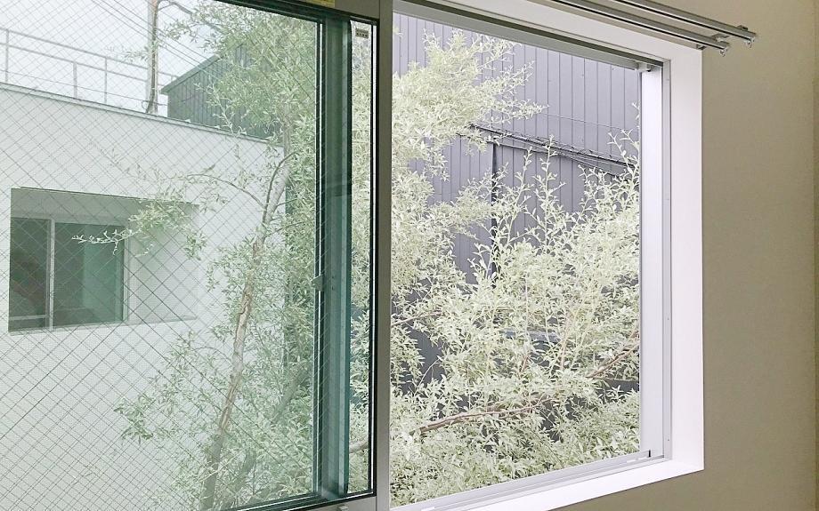 窓からはシンボルツリー