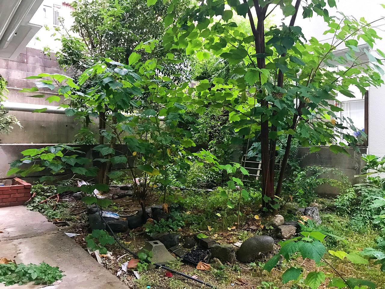 60平米以上ある専用庭