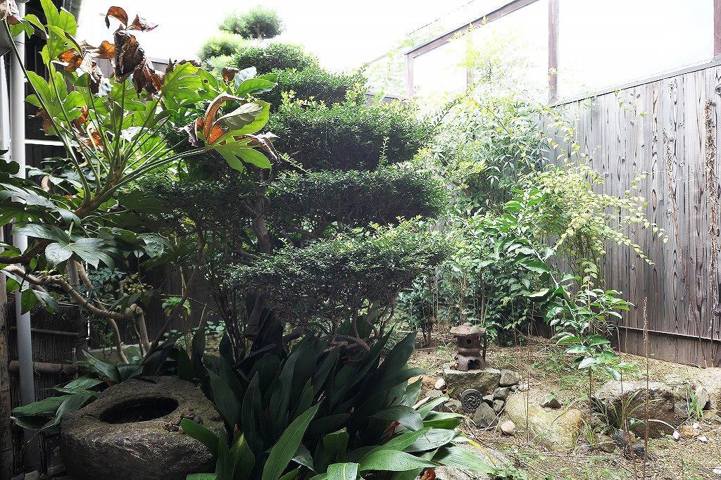 灯篭や庭石も良い感じの庭