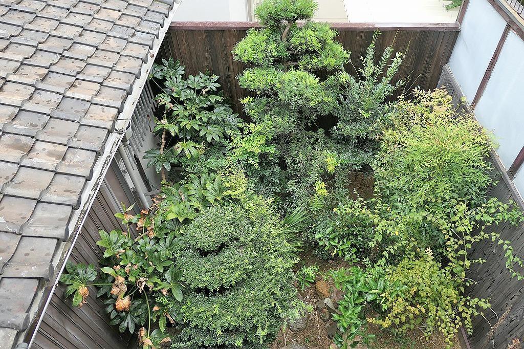 2階から庭を見下ろす