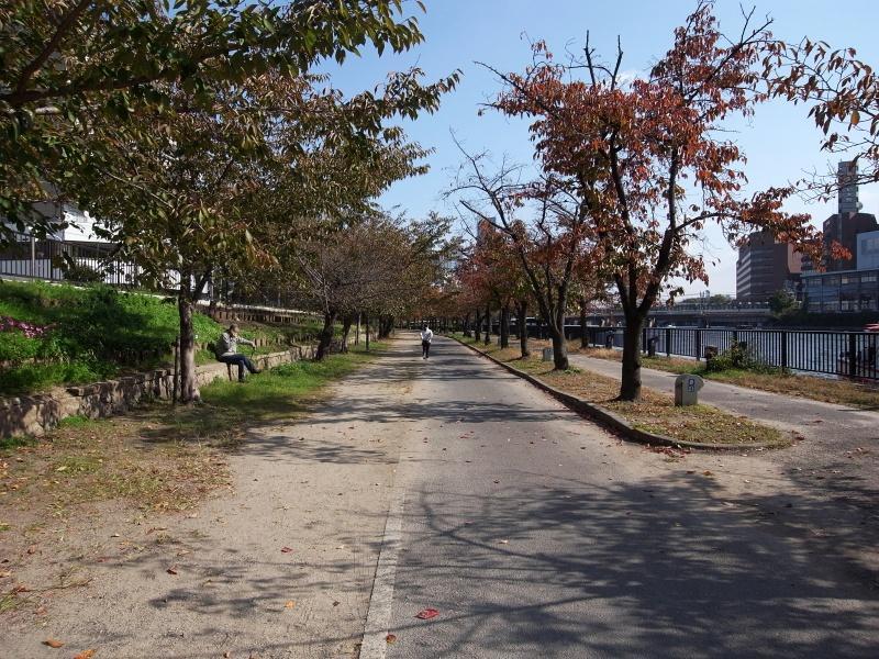 大川沿いの遊歩道。