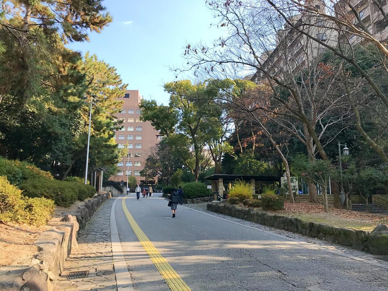 駅への道。反対側には緑地公園が広がります