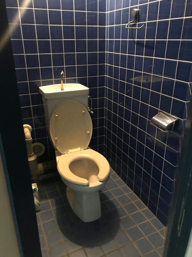 トイレを囲むブルーのタイルが船中感出してます。