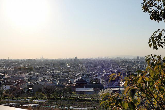 この抜け感。遠く阿倍野ハルカスまで見渡せます。