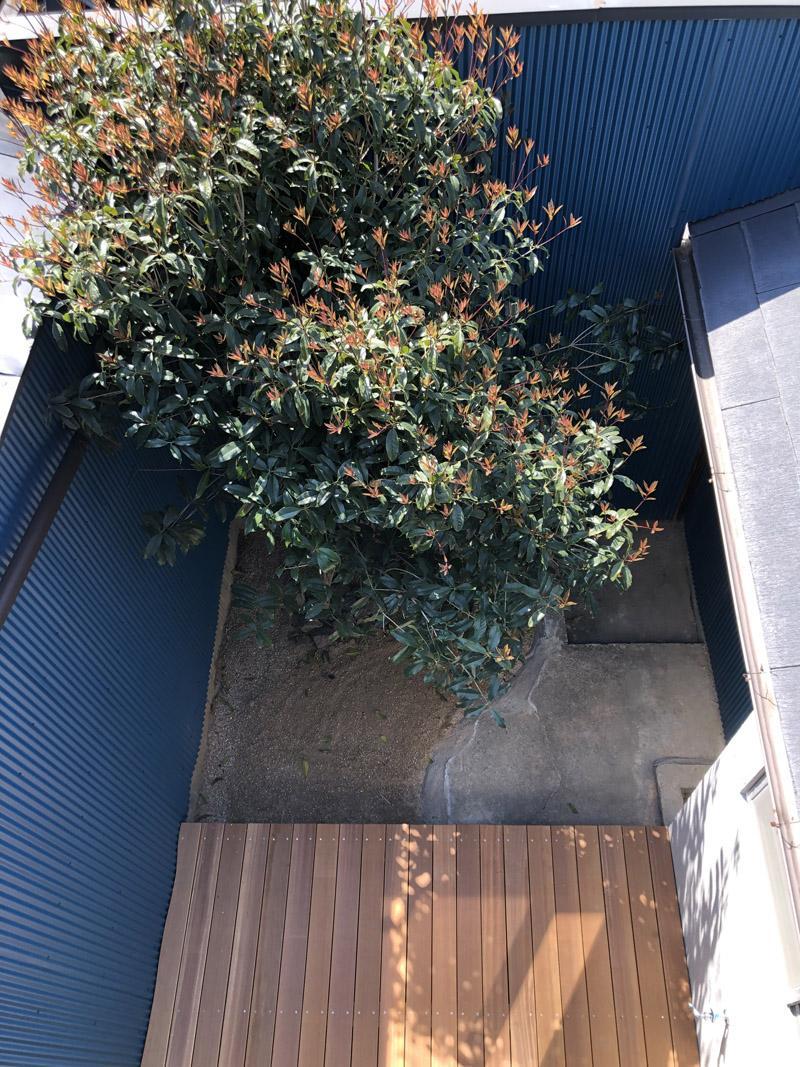 バルコニーから坪庭を見下ろす。