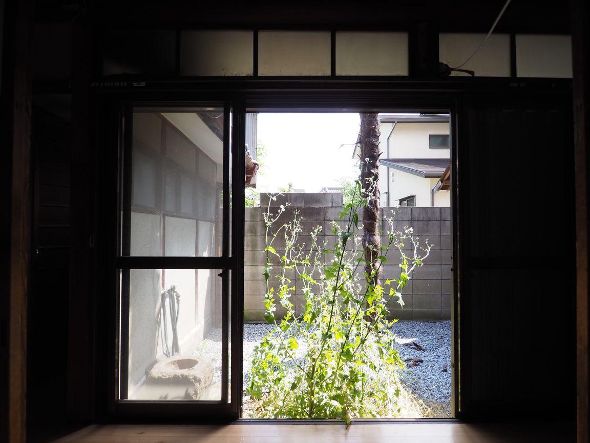 縁側から専用庭を眺める