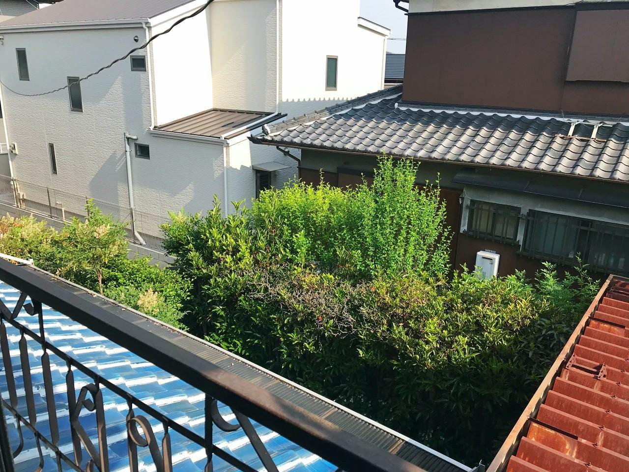 窓からは庭が見渡せます
