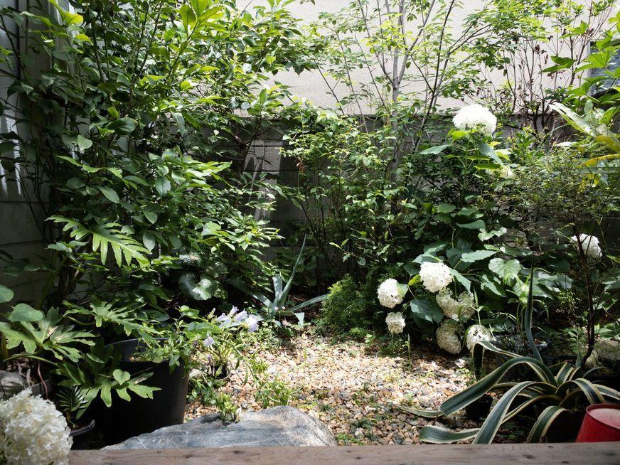 自分好みの植物を育てれば癒しの空間になります(写真提供:中山智憲 / 園園)※入居中の様子