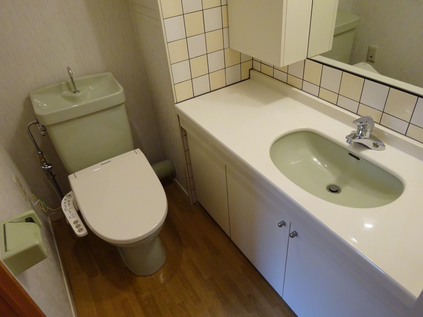 広めのカウンター洗面付きのトイレ