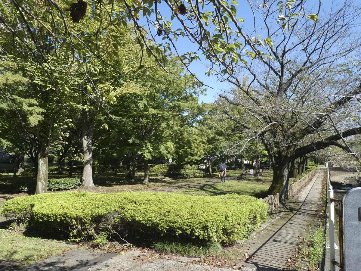 自然豊かな仙川公園が目と鼻の先