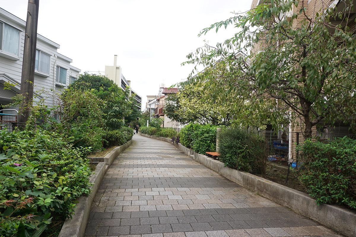 建物前面の緑道