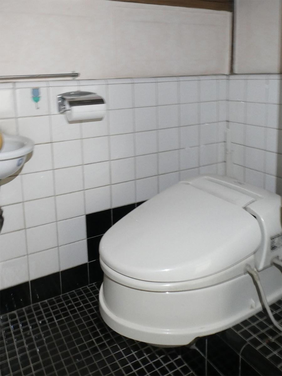 トイレは和式便器にスワレット