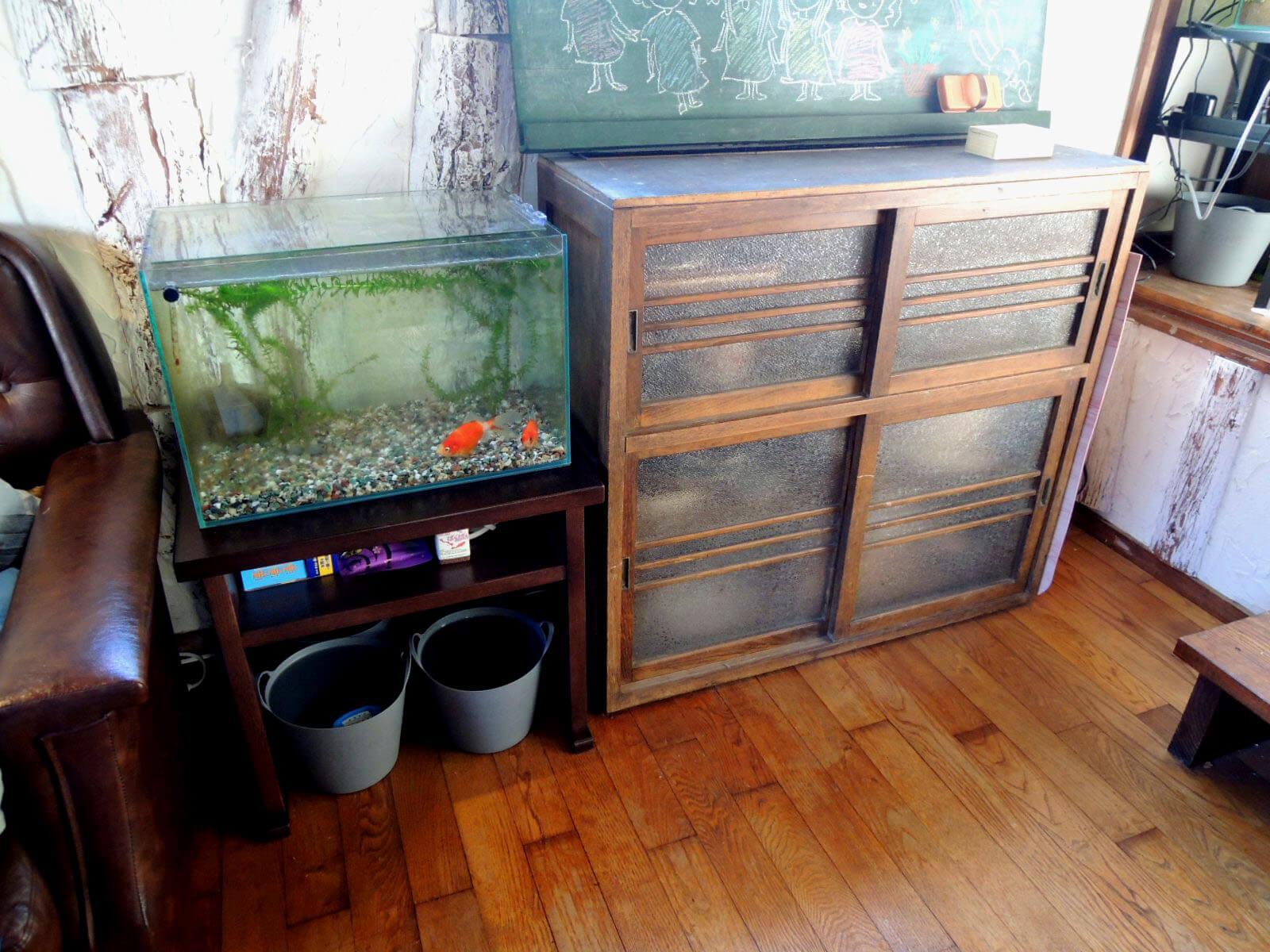 レトロなこの家に金魚のいる風景、和みます
