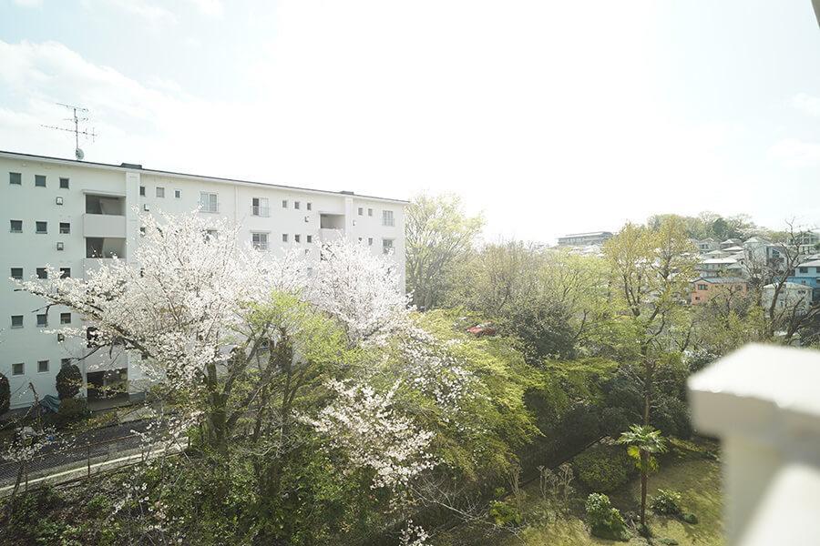 窓からはこの眺望。空が広く、心地よい景色