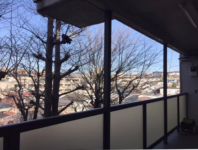 玄関側の共用廊下。2階からの景色とは思えない開放感