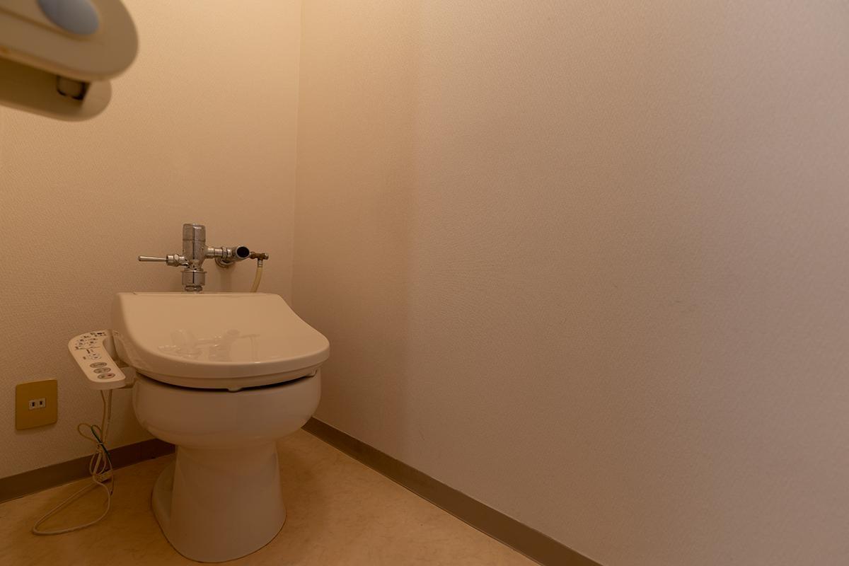 トイレは古いがきれい